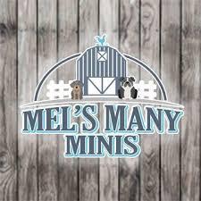 Mels-Many-Minis